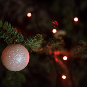 Гостът на рождество